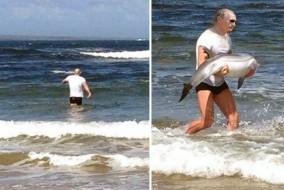 vladimir-putin-saves-dolphin